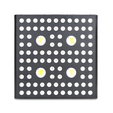 LED COB Vero 29 Grow Lights for Planting