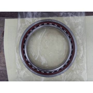 Double Row Angular Contact Ball Bearing (3056213/3213YM)