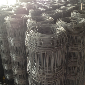 Galvanized Wire Field Fence