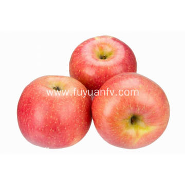 Top Quality Fresh Cheap Fuji apple