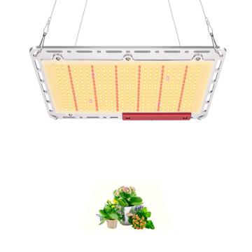 Samsung LM301B high PPFD led grow lights