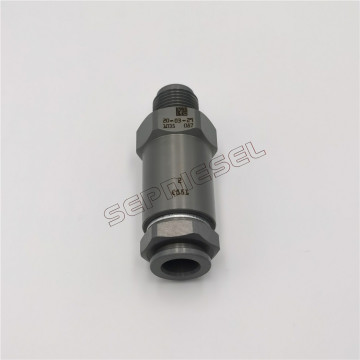 Fuel Rail Pressure Relief Valve 1110010035 for Bosch