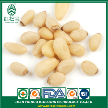 New crop Red pine nut kernels 650 pcs