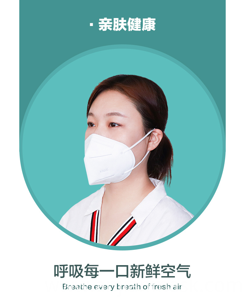 Dust Disposable KN95 Face Mask