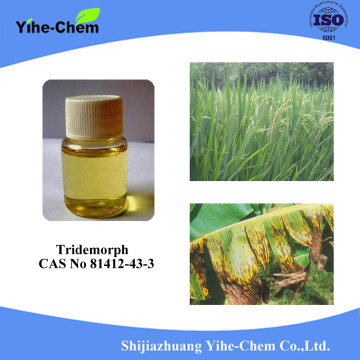 High quality 99% Tridemorph CAS NO 24602-86-6