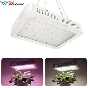 The 1000W LED Grow Light