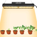 Small LED Grow Light 2x4ft for Indoor Plants