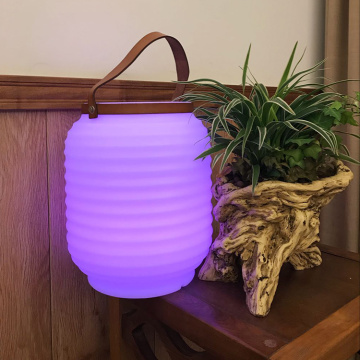 OEM Portable Speaker Lamp with Wine cooler