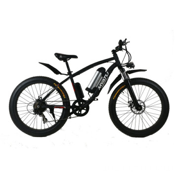 Electric Bike with Fat Tire LCD Display