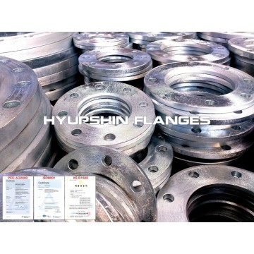 Hot Dipped Galvanizing Backing Ring CL150 Flange