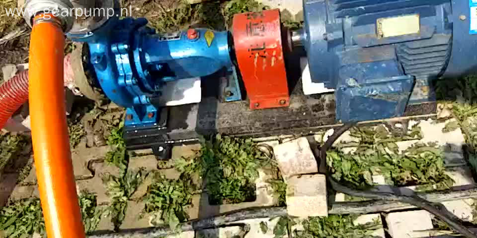 IS series single stage electric 5hp water pump