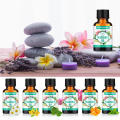 LAGUNAMOON 10ML Coconut Fragrance Oil Blueberry Grapefruit Red pomegranate litchi Fig For Candle Soap Making Perfume Air Fresh