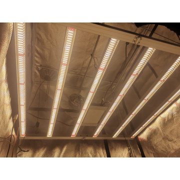 8bars grow light led for medical plants commercial