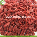 Anti Tumor Nutrition Fuits Natural Conventional Goji Berries