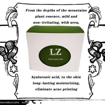 Laizhen plant essence Fix BB cream
