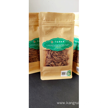 Rich in Protein Dried Mealworms
