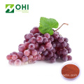 Grape Fruit Juice Powder