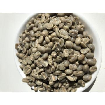 Arabica Green Coffee Bean with AA Grade