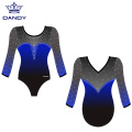 Custom mesh ombre leotards