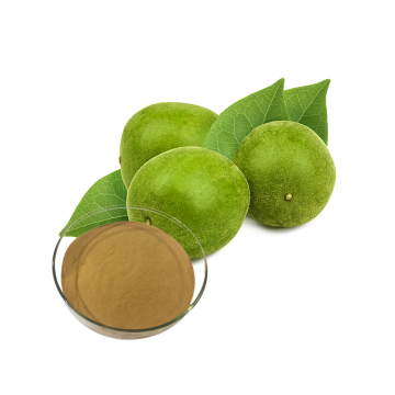 monk fruit extract ingredient  mogroside