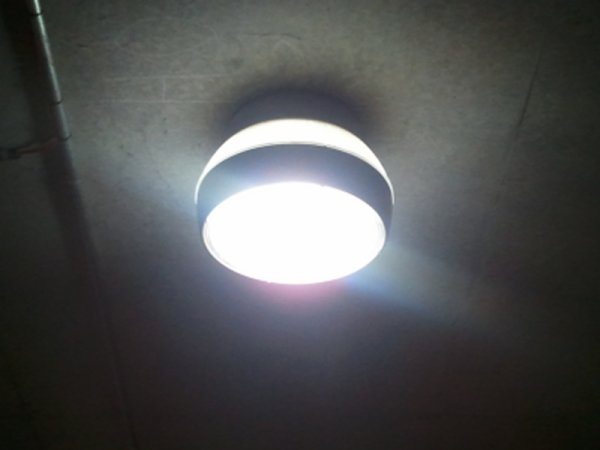 30W LED Garden Light (4)