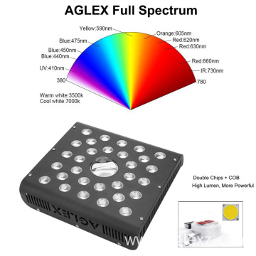 Seedling LED Grow Light COB 600W Red Blue