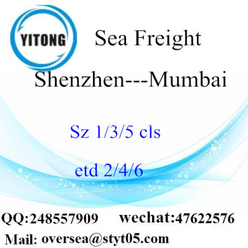 Shenzhen Port LCL Consolidation To Mumbai