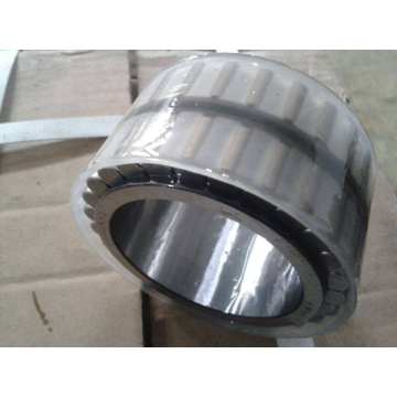 Double Row Cylindrical Roller Bearing (3682776)