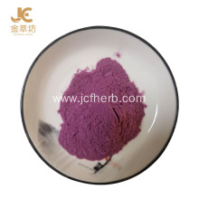 Bilberry cranberry extract anthocyanin powder