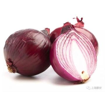 Red Onion with Lowest Price