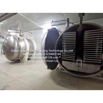 Freeze-drying Cubilose freeze dryer.