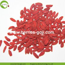 Factory Supply Natural Bulk Fruit Product Goji Berries