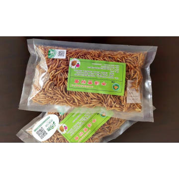 Protein-Rich dried mealworm for export