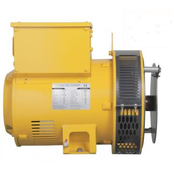Brushless Three Phase pmg Motor Generator