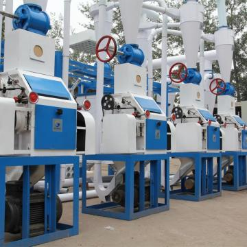 30 TPD hot sale maize milling machine