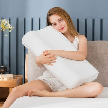 Comfity Lower Back Pillow