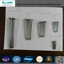 2016 Iron Common Nails Tack Nails