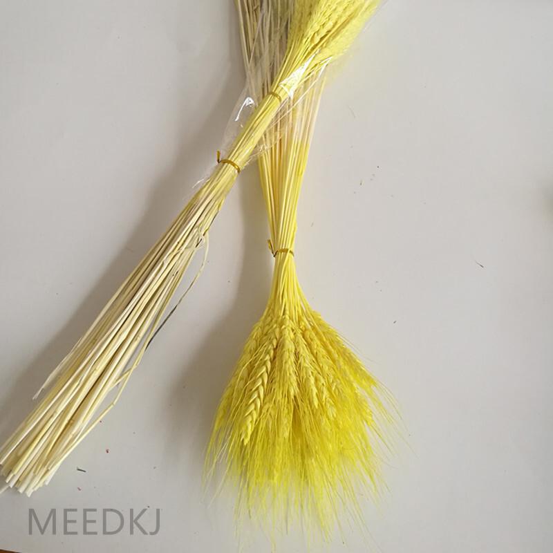 50pcs wheat ear wheat plant dried flower home flower arrangement party home use
