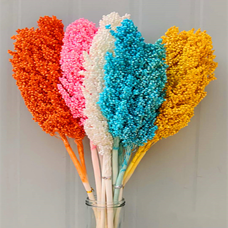 About 50cm Natural Dried Flowers Bouquet Sorghum Ear Home Living Room Wedding Party Decoration Preserved Spike Shooting Props
