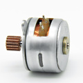 15BY25-257 Permanent Magnet Stepper Motor - MAINTEX