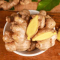 Middle East Hot Selling Chinese Fresh Ginger