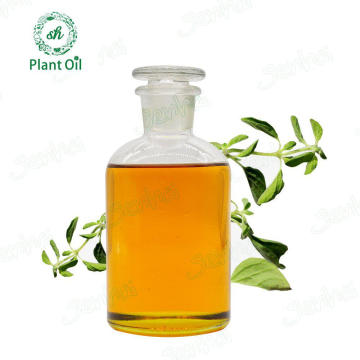 Factory Hot Sale Fresh and Natural Orgeano Oil