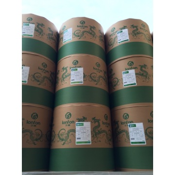 Notebook Printing Paper in Roll