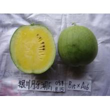Hybrid yellow fresh  watermelon seeds