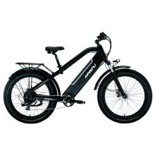 Power Fat Electric Mountain Bike