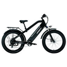Variable Speed Electric Bike