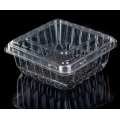 clamshell packaging blueberry container