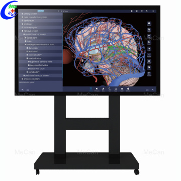 Educational 3D Anatomy System with Touch Screen