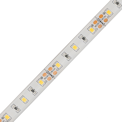 High CRI>95 SMD 2835 LED Strip Light 24VDC In China Supplier