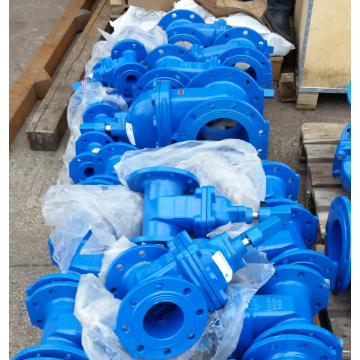 Ductile Flanged  Resilient Seated Gate Valves